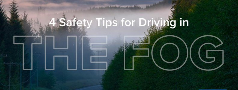 4 Safety Tips for Driving in the Fog | Swerve Driving School